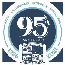 95th Anniversary Logo